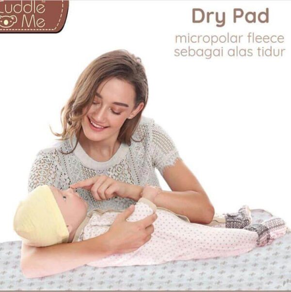 cuddle-me-malaysia-products-drypad-featured-img